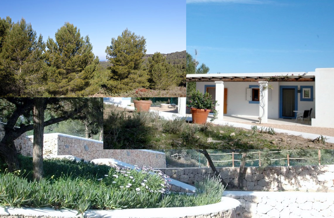 villa-309-cala-tarida-ibiza-9